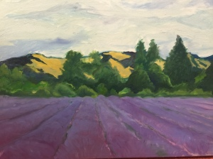 Lavendar Fields at Monestary, Provence France
