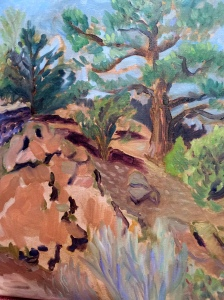 Landscapes NM C